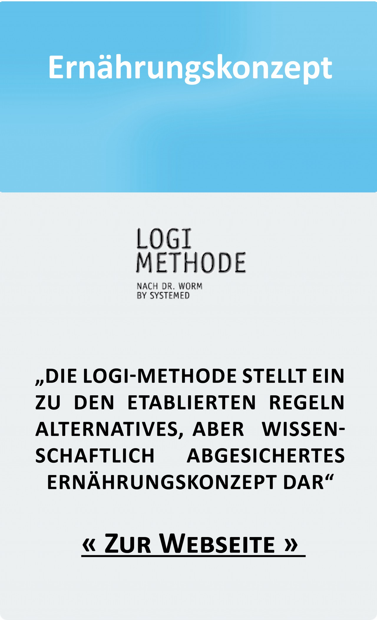 logi-methode.de